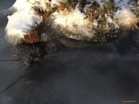 Ice, rock & moss